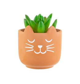 Sass & Belle Sass & Belle - Cat whiskers terracotta mini planter
