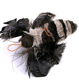 Tabby Tijger Tabby Tijger - nachtvlinder aas