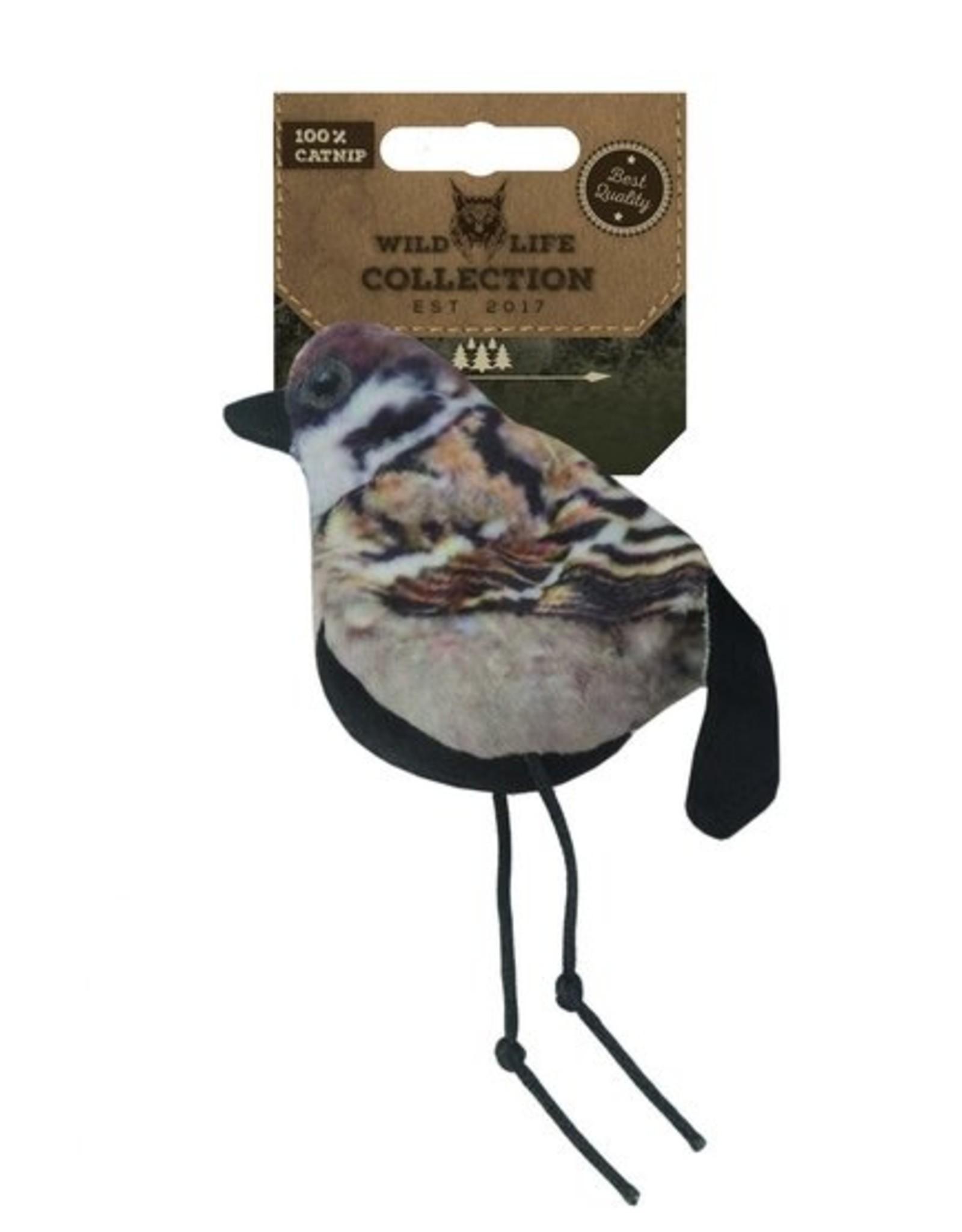 Wild Life Cat - Sparrow