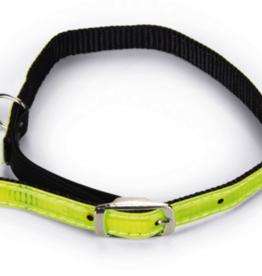 Beeztees Beeztees - kattenhalsband Reflecterend groen