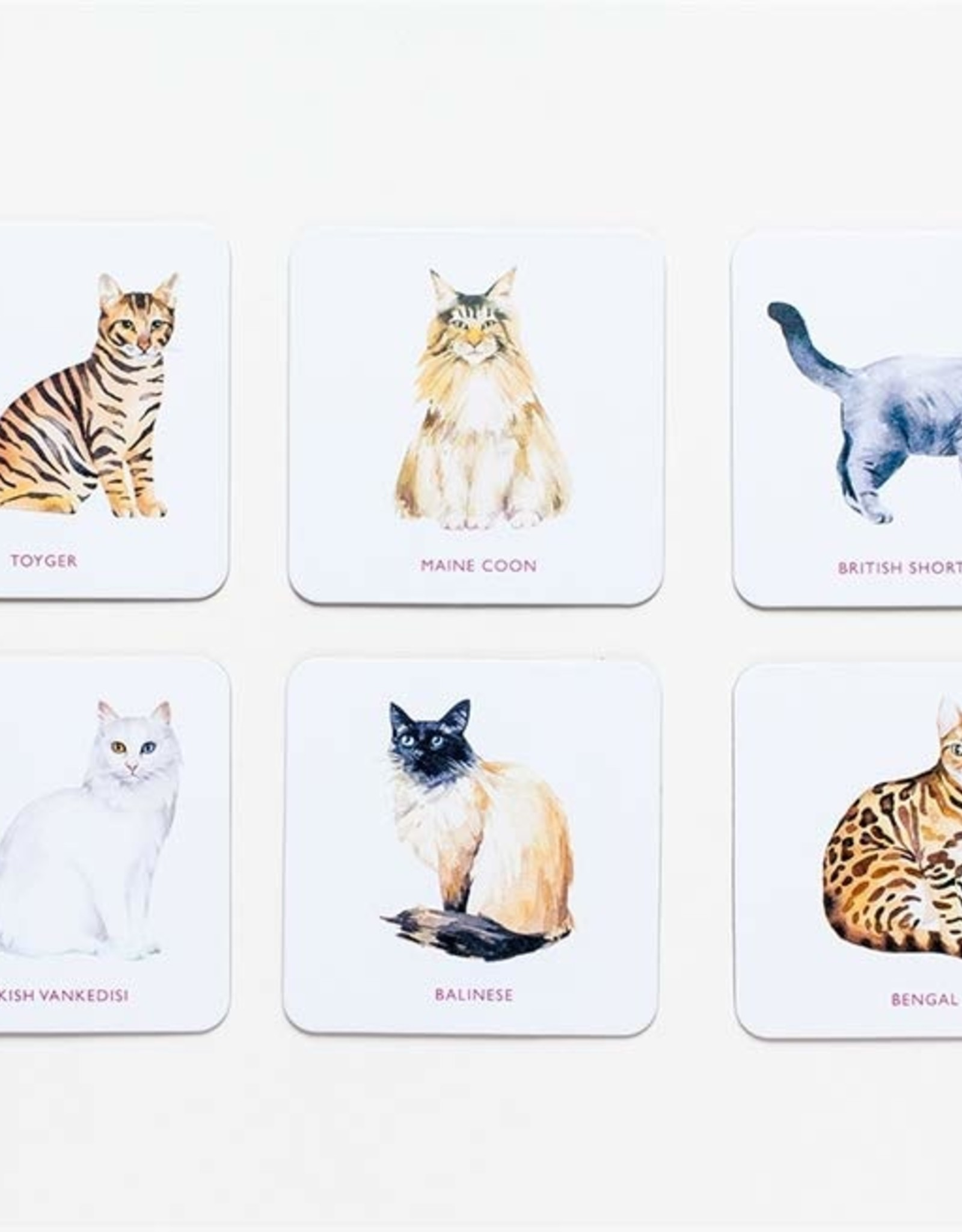 Laurence King Laurence King - Cat Coasters