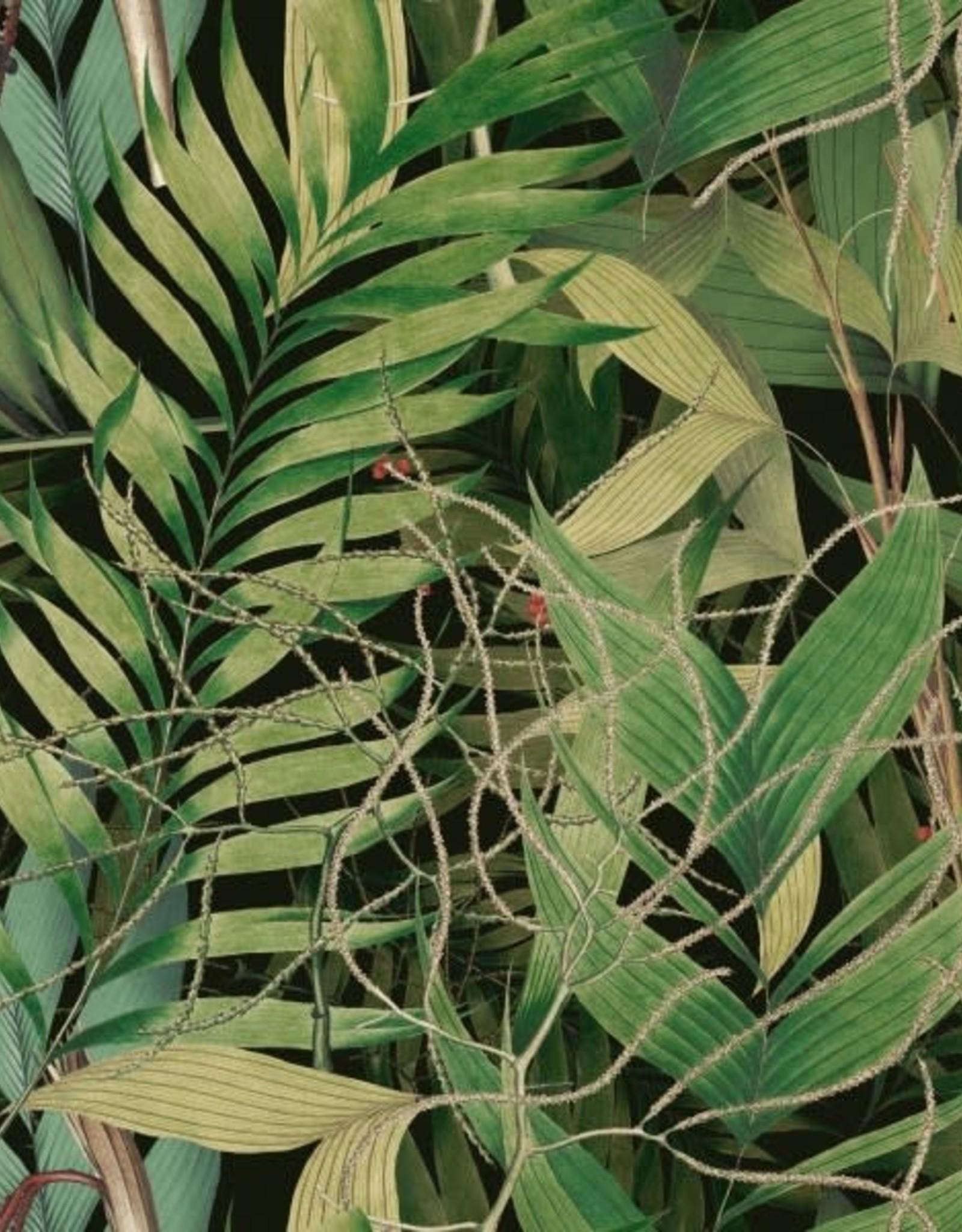 Behang Exotic Garden - 156 x 300 cm