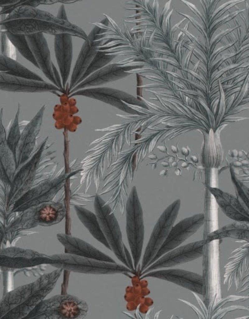 Behang Madagascar Grey - 156 x 300 cm