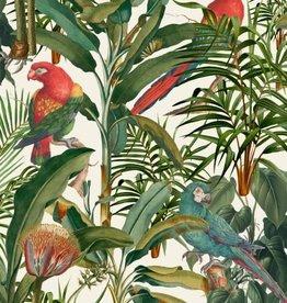Behang Parrots of Brasil - 156 x 300 cm