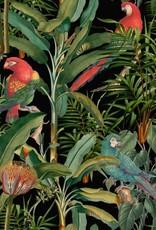 Behang Parrots of Brasil Dark - 156 x 300 cm