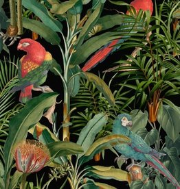 Behang Parrots of Brasil Dark - 156 x 300 cm