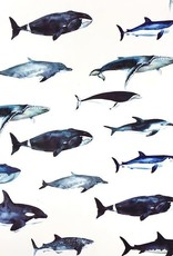 Inpakpapier - Sea Life