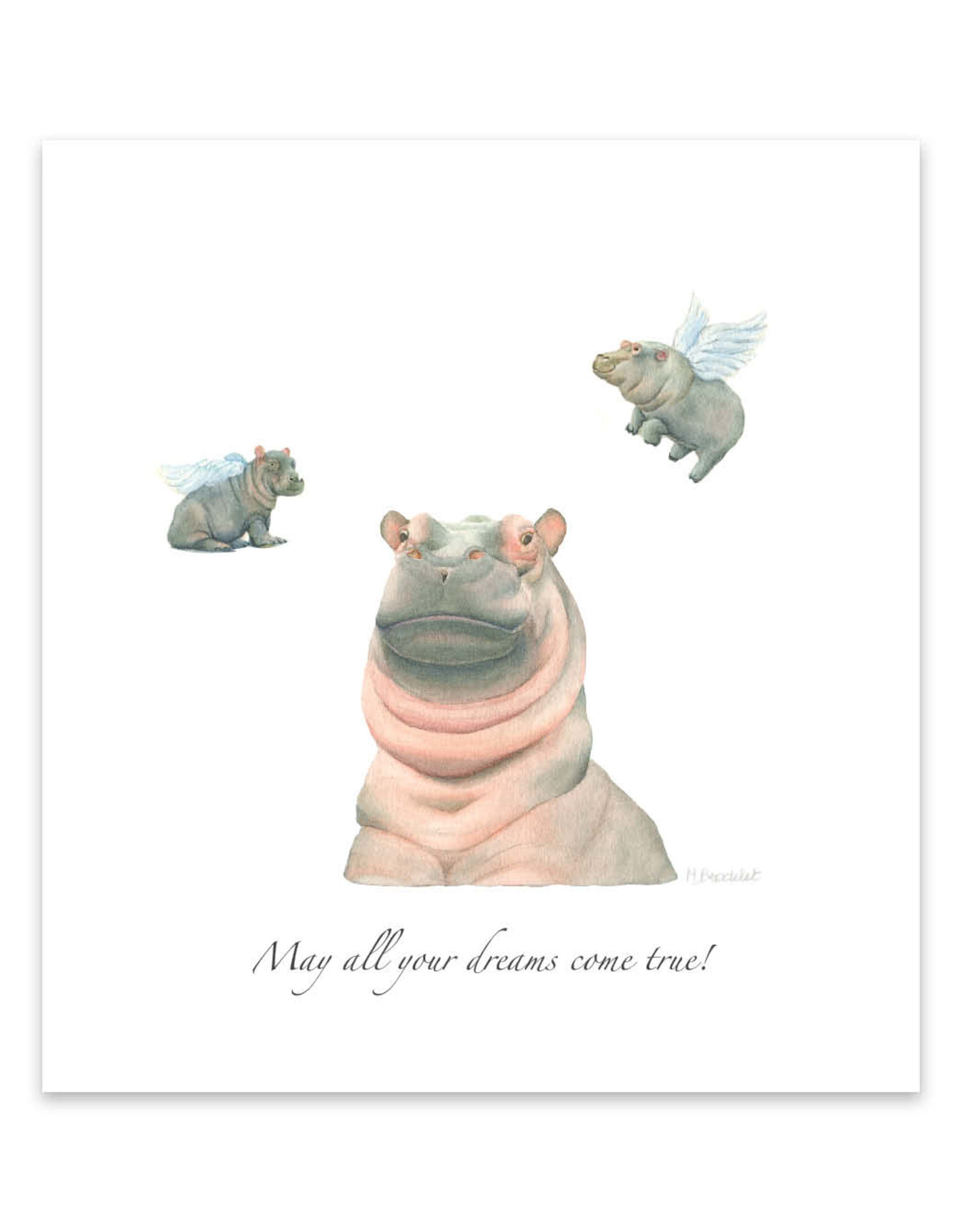 Wishingwell Wenskaart 'May all your dreams come true' Hippo