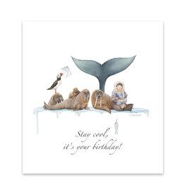 Wishingwell Wenskaart 'Stay cool, it's your birthday' walrus