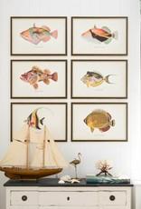 Mind the Gap Framed Art 60 x 40 cm - Fishes of hawaii - Kihikihi Fish