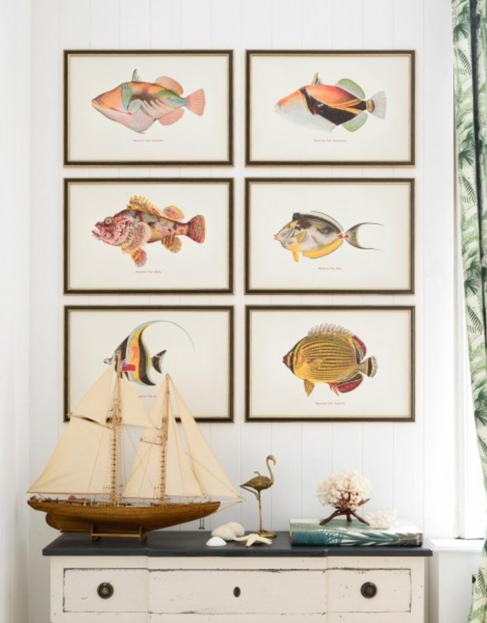Mind the Gap Framed Art 60 x 40 cm - Fishes of hawaii - Humuhumu Fish