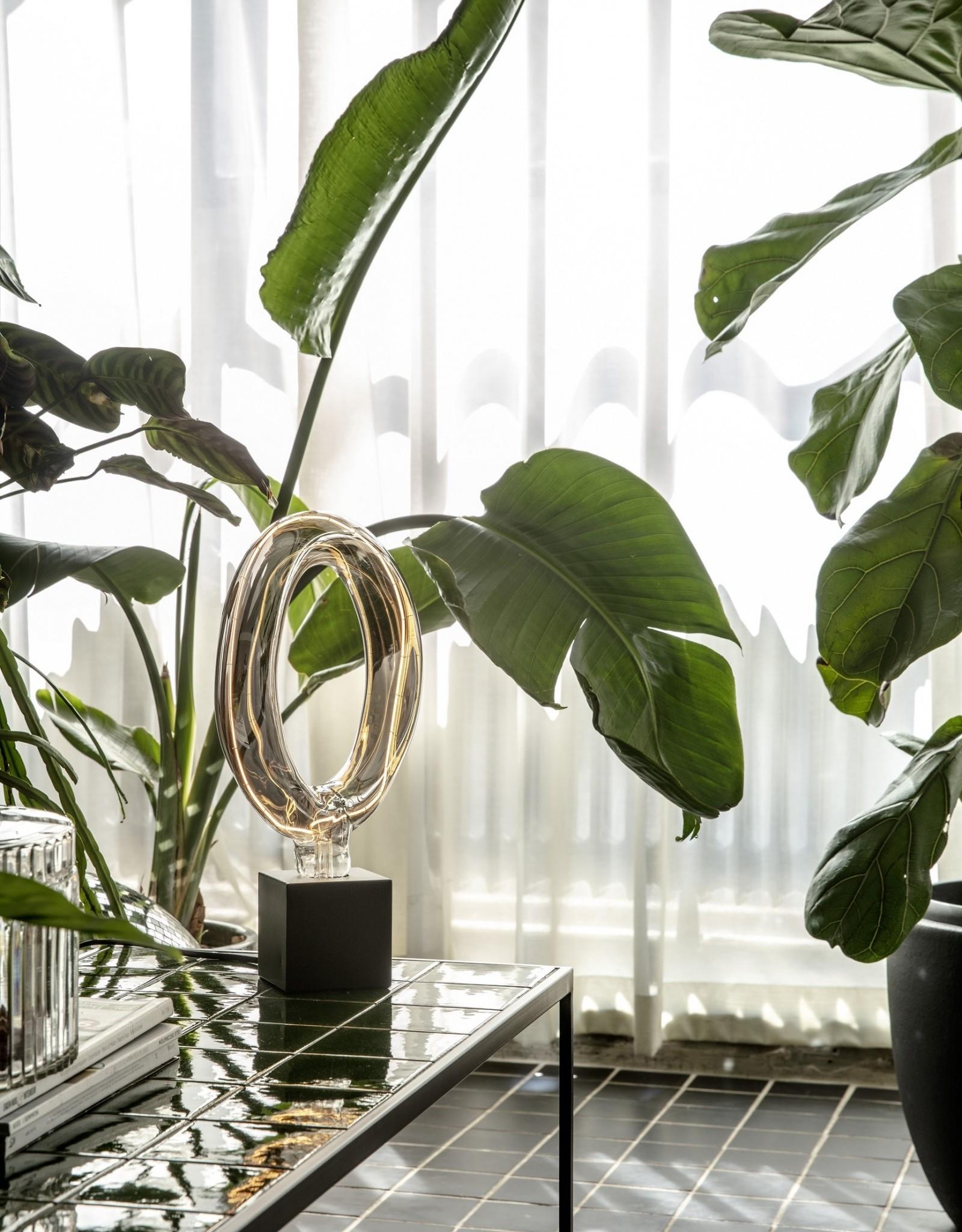 Lichtbron LED Titanium Ring - Rada
