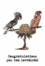"vanilla fly Kaart ""Lovebirds"" congratulations (incl. envelop)"