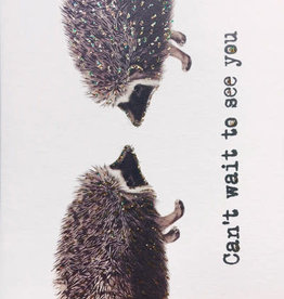"""vanilla fly Kaart """"Can't Wait To See You"""" Hedgehog (incl. envelop)"""