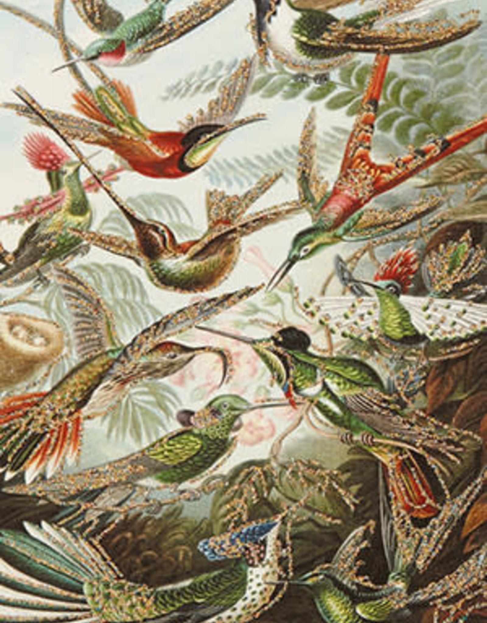 "vanilla fly Kaart ""Exotic Birds"" (incl. envelop)"