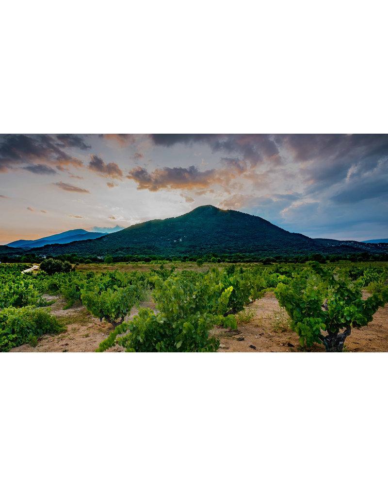 Bottle of the week #9 Bodegas Maranones Treinta Mil Maravedies 2017 5+1