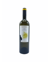 Bottle of the week #19 Falanghina Teanum Puglia 2019 5+1