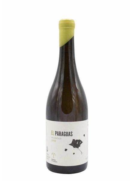 Bottle of the week #25 Bodegas El Paraguas Ribeiro 2018 5+1