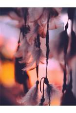 Francesca Bianchi Francesca Bianchi - Angel's Dust - Extrait de Parfum