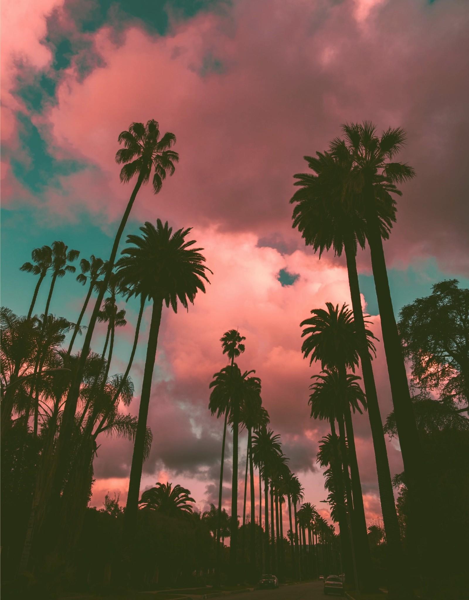 Gallivant Gallivant - Los Angeles - Eau de Parfum