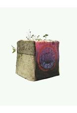 """Haeckels Haeckels - Dreamland GPS 23' 5""""N - Mycelium geurkaars"""
