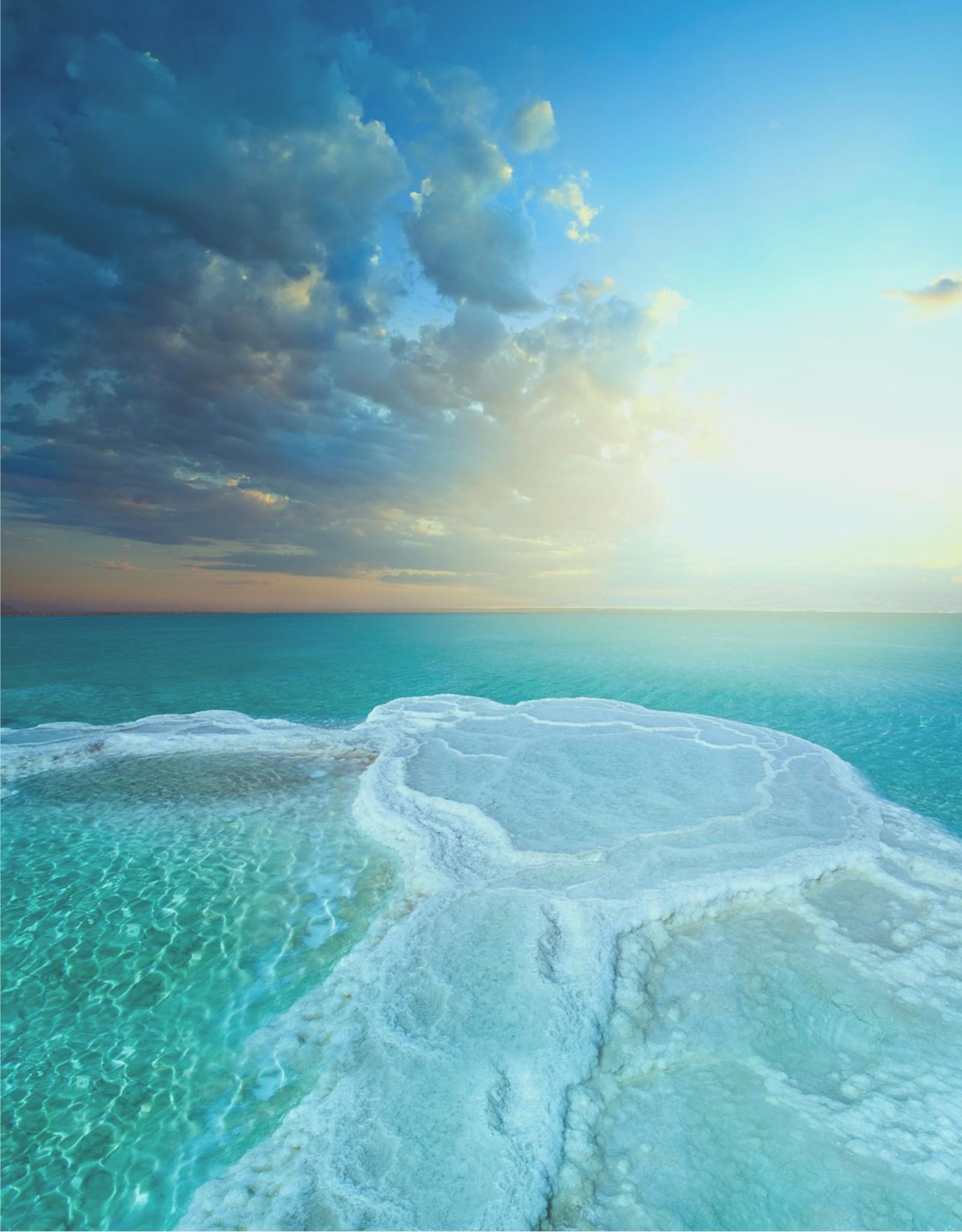 Savonneries Bruxelloises Savonneries Bruxelloises - Dead Sea Mud - Glycerine zeep - 2 x 200 gr