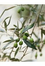 Savonneries Bruxelloises Savonneries Bruxelloises - Olive Flower - Savon