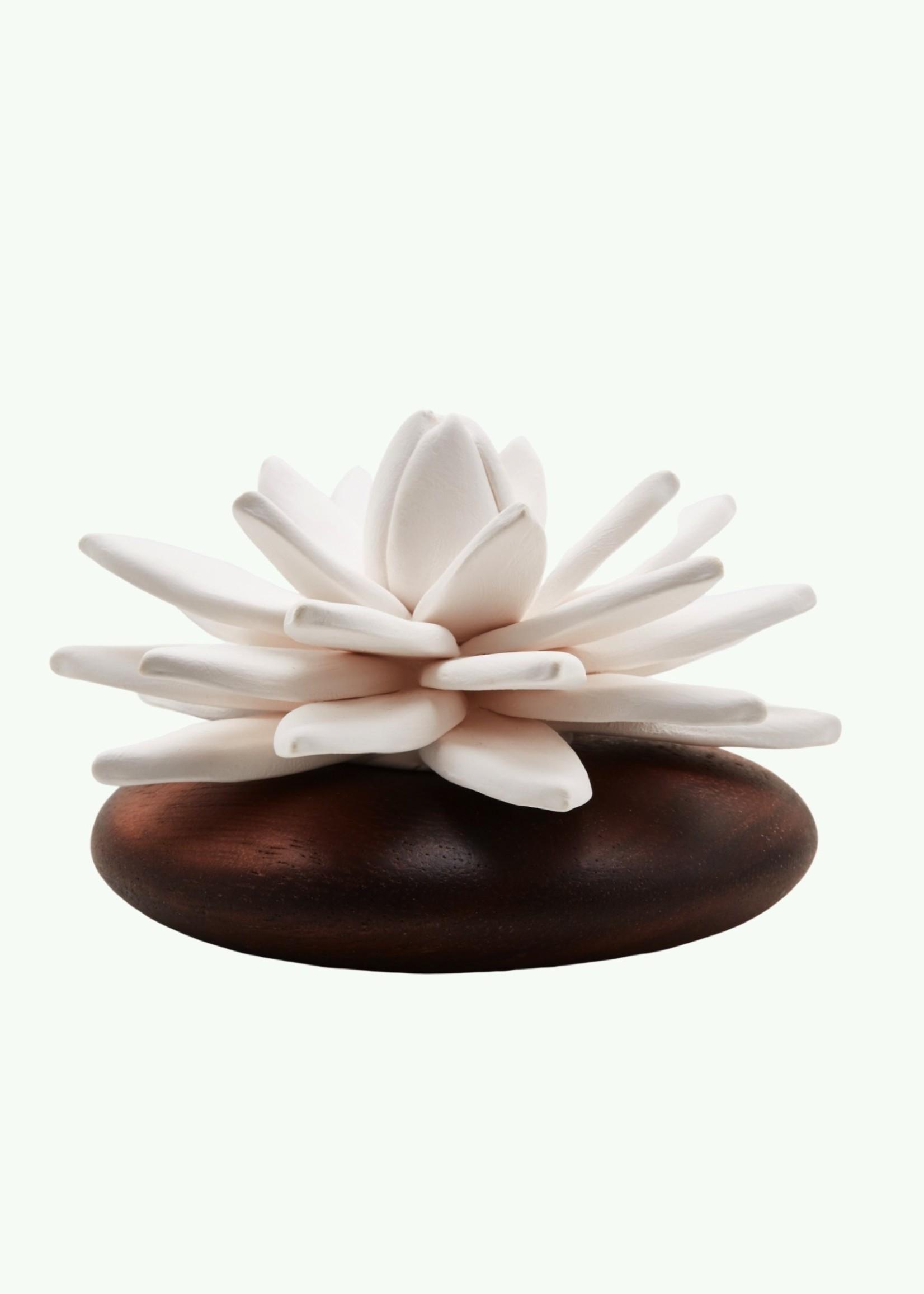 Anoq Anoq - Lotus des Indes - Diffuseur de Parfum