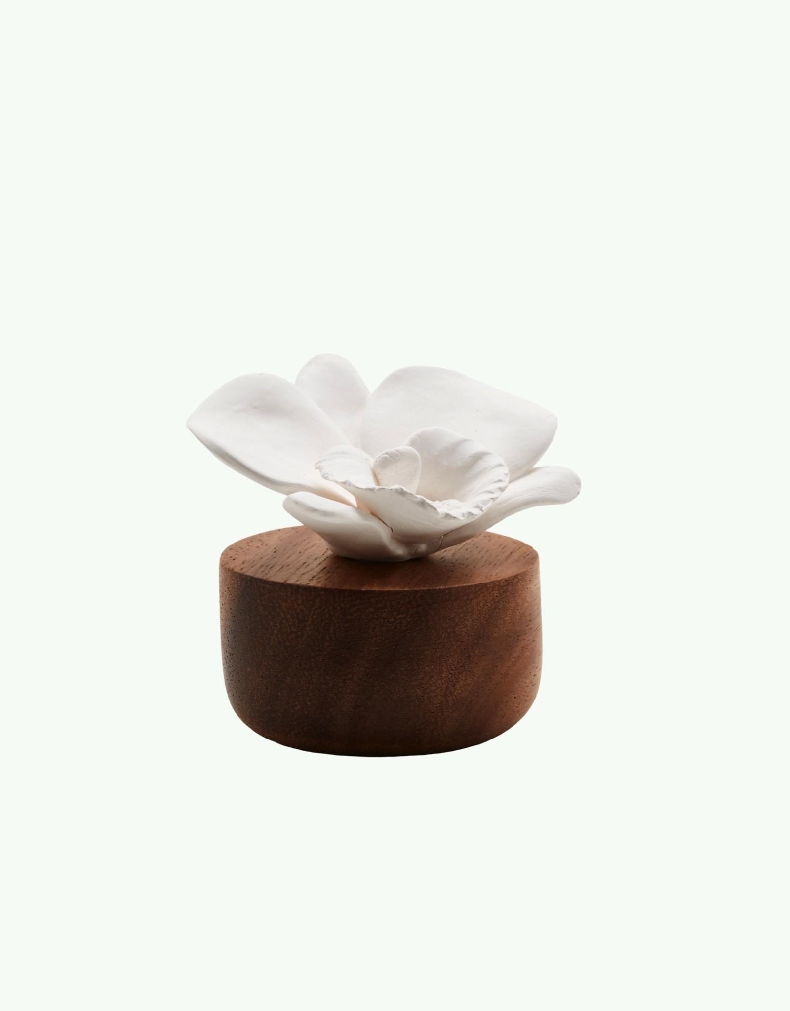 Anoq Anoq - Orchidée du Nepal - Perfume Diffuser - 2 colours