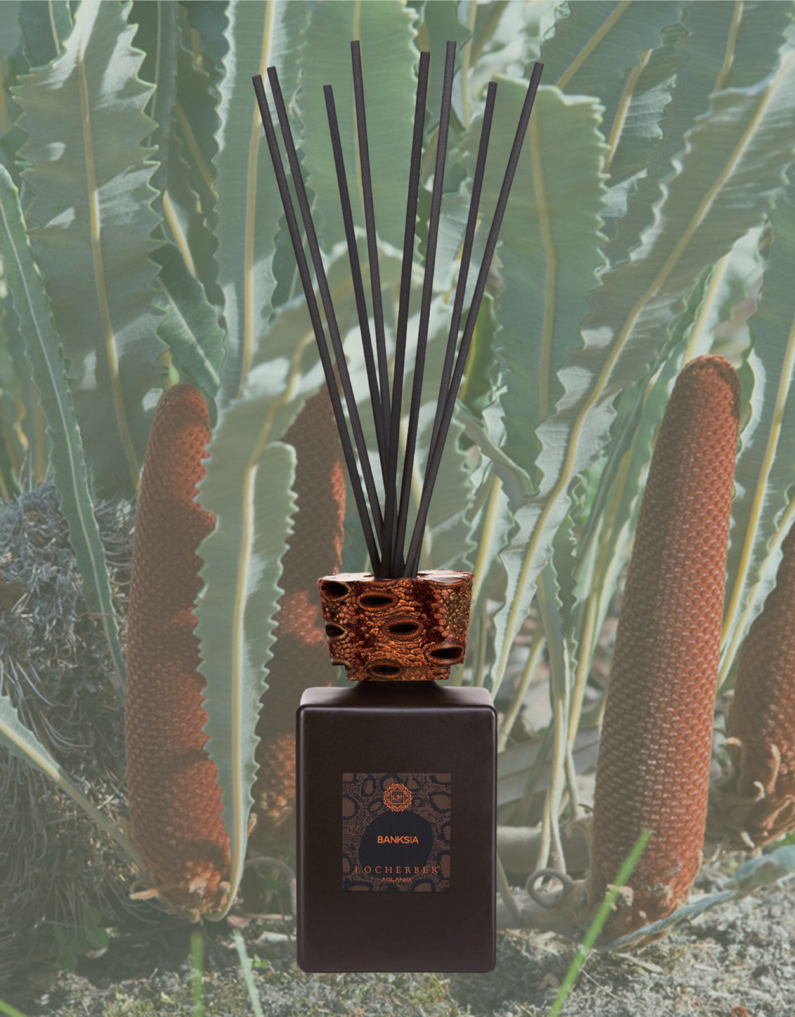 Locherber Locherber Milano - Banksai - Gift Box