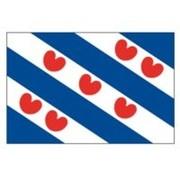 Friese vlag 30x45