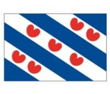 Talamex Friese vlag 40x60