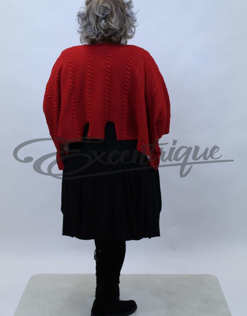 New Jersey - Pullover - Rood Vlecht Stans :