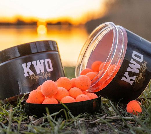 KWO Squid Specials - Pop-Ups