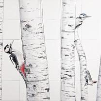 Vogels & wild