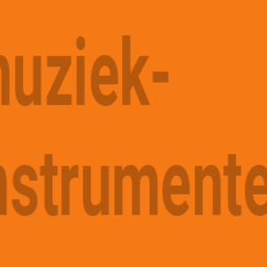 Muziekinstrumenten