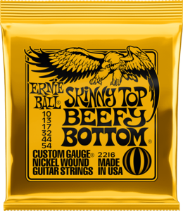 Ernie Ball 2216 Skinny top beefy bottom  10-13-17-32-44-54