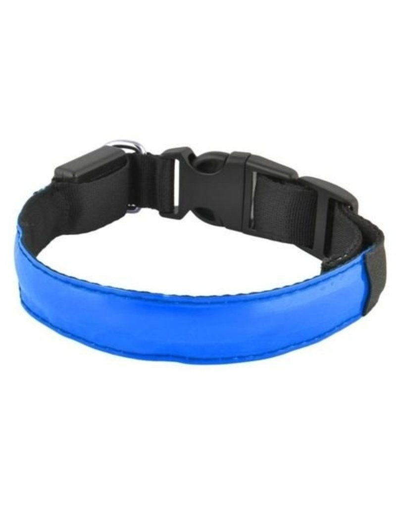 Gadget Dojo LED Hondenhalsband Flashing Lichtgevende halsband voor je hond