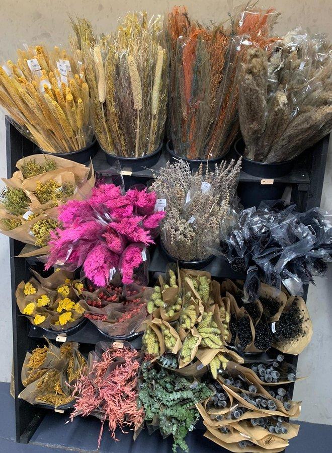 Droogbloemen boeket naturel mix