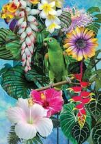 Lucky Parrot