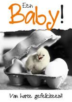 Een Baby!