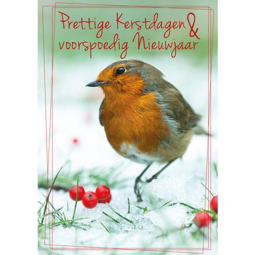 Prettige kertdagen & voorspoedig Nieuwjaar