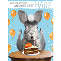 XL kaart - Another birthday another grey hare