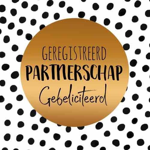 Geregistreerd partnerschap