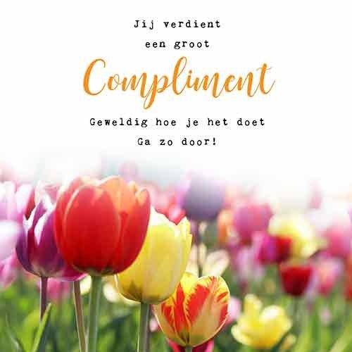 Jij verdient een groot compliment