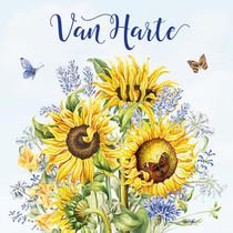 Minikaartje - van Harte