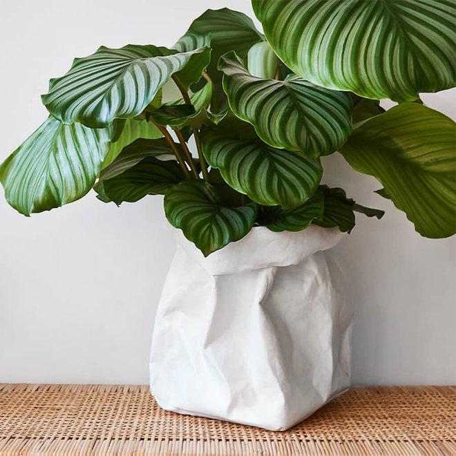 Paperbag-Wit-L