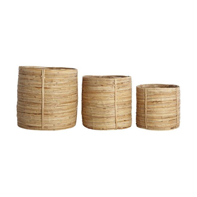 Manden bamboe