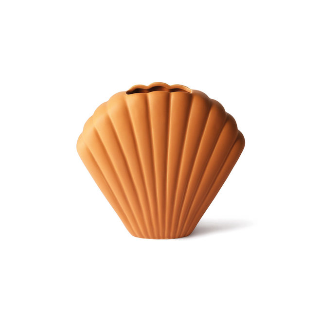 Vaas Shell terra | L