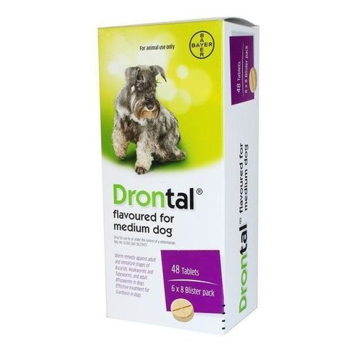 Bayer Drontal Chien Flavour